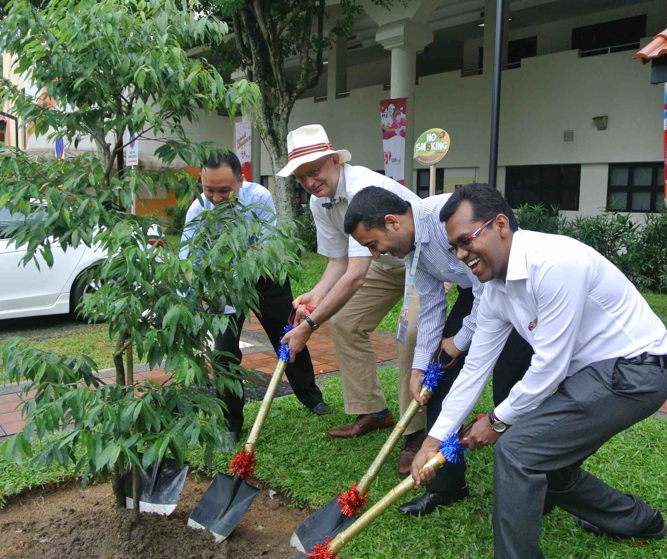tree planting in singapore professor david veale